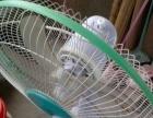 梅村一完好电风扇二十元