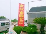 苏州太仓专业绿植租摆花卉租赁