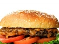 美式汉堡 原滋原味 投资金额 5-10万元