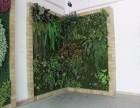 哪里卖立体墙北京仿真假植物墙定做