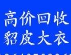 芜湖冰雪贵夫人回收貂皮.芜湖各种款式回收貂皮.