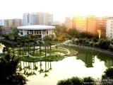 天河区岭南养生谷养老院 广州高端智能化老年公寓支持异地医定点