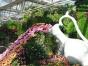 专业制作玻璃钢雕塑,精品不锈钢雕塑,浮雕展会造型