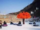 雪场游乐项目雪地转转滑雪场戏雪飞碟滑雪圈雪地转转厂家供应