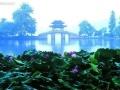 上海、苏州、杭州+枕水乌镇双飞3日游