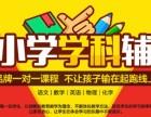 南宁中小学一对一课程辅导 小学学科培训班