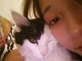 求爱猫的朋友过年帮我带几天猫