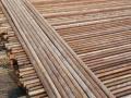 建筑脚手架5米长钢管