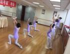 西城区少儿舞蹈培训 北京好的舞蹈培训班
