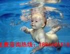 吉姆考拉婴儿游泳馆加盟方式及加盟费多少钱