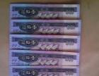 5张100蓝钱币