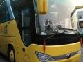 杭州大巴中巴标准价格带司机租车服务