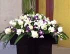 发财树专业服务新鲜花材 及时送达