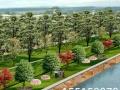 园林规划图、效果图、施工图设计制作