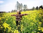 上海金源果蔬户外休闲一日游 赏花 娱乐CS 烧烤 农家乐采摘