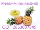 菠萝果粉 菠萝速溶粉