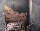 博罗园洲白蚁防治,石湾白蚁防治中心,福田白蚁灭治站