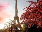 暑期基础法语培训