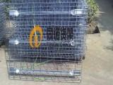 货架层网-货架网片-货架网格层网- 南京同诺 网格层板片