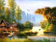 学画画先学什么好青岛专业美术培训崂山艺海画室