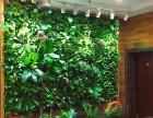 云南昆明绿化墙