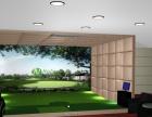 室内高尔夫/模拟高尔夫/高尔夫/高尔夫模拟器