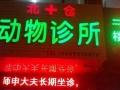 邯郸北仓动物诊所