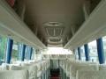 中山租车,中巴大巴出租188-2600-3348