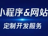 广州抖音小程序,微信小程序,大型网站系统定制开发