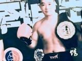 里水镇专业散打泰拳特色搏击馆:中泰搏击馆