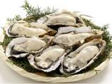 牡蛎虫草枸杞片压片糖果 夫妻健康膳食营养品陕西压片糖果OEM