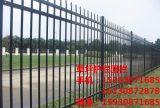 福州锌钢护栏网 锌钢栅栏厂家 围墙护栏价格