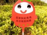 徐州生产产家草地牌小草牌公园标语标牌标识指示系统可以定制