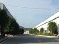 500至1000钢结构厂房、送门前空地、