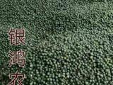銀鴻農業優質黃精種籽 凈籽出售,出芽率達90%以上