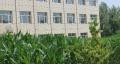 红山经济开发区维信路西有四亩半地厂房出售