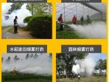 省油玉米喷药机 一键启动烟雾机 农用打药弥雾机 新货到