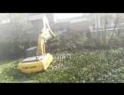 茂名化州水上清於挖掘机出租
