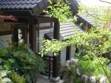 北京庭院綠化設計