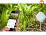 南宁小程序开发智慧农业小程序小程序定制费用