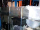 鱼缸清洁维护,观赏鱼饲养