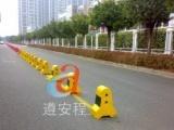 深圳世界大运会停车场划线_深圳世界大运会