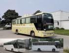 客車)青島到上海汽車/客車(大巴車時間表)票價多少錢?