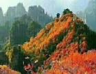 张家界平安旅游向导推出森林公园-天门山3天2晚精华