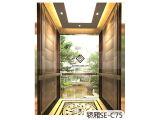 观光电梯如何选购|江苏上海观光电梯优质供应商推荐