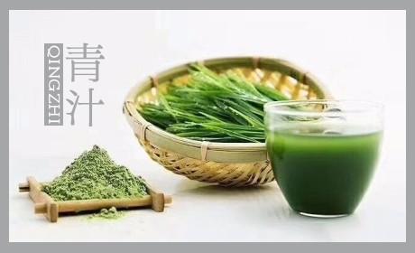 山本汉方大麦若叶青汁小包装代加工优质大麦苗粉原料出口厂家批发