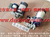 CL1肯岳亚压力机超负荷泵,43875-2定量注油器 购原装