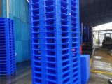 广西 塑料卡板生产厂家 现价卡板 批发优惠