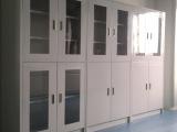 实验室药剂柜 药品柜 耐腐蚀试剂柜 专业定做 厂家直销