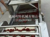 诸城利特机械红枣生产线 红枣加工设备 红枣整套加工设备